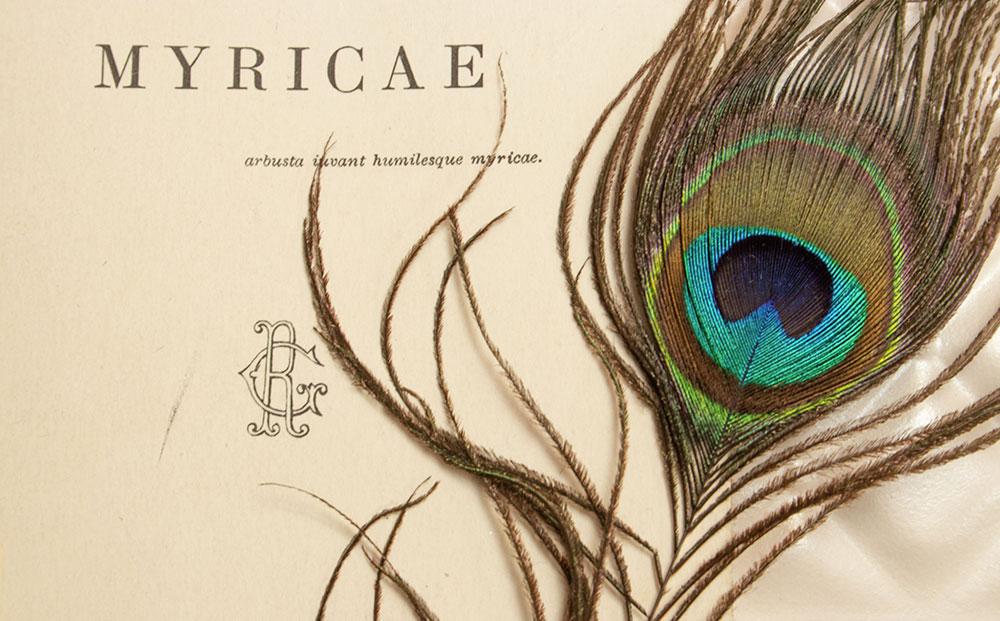 Libro Myricae